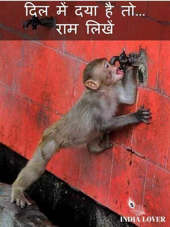 jay sri ram 📿🙏 - _ दिल में दया है तो . . . राम लिखें | INDIA LOVER - ShareChat