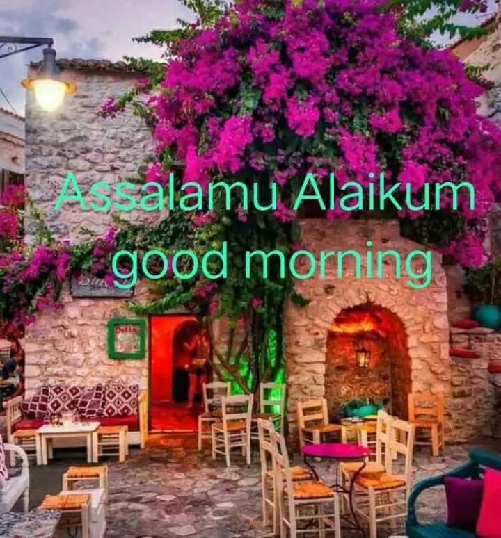 🌷🌷jumma mubarak🌷🌷 - alamu Alaikum a good morning FAVV - ShareChat