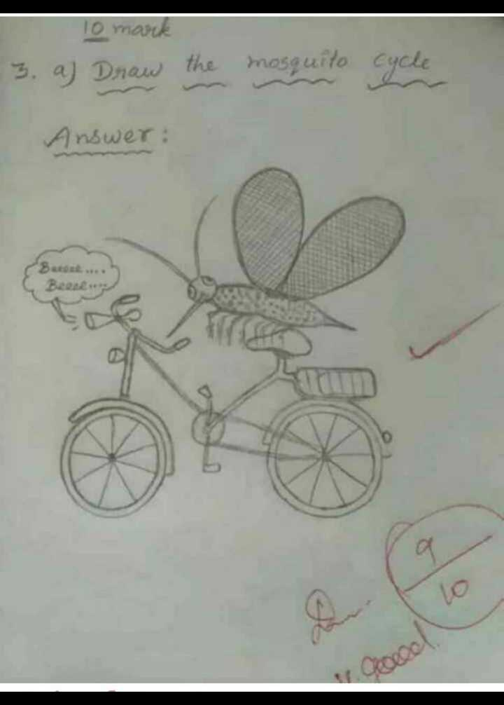 just forfun😂😂😂😂😂 - 10 mark 3 . a ) Draw the mosquito cycle Answer : C Been - ShareChat