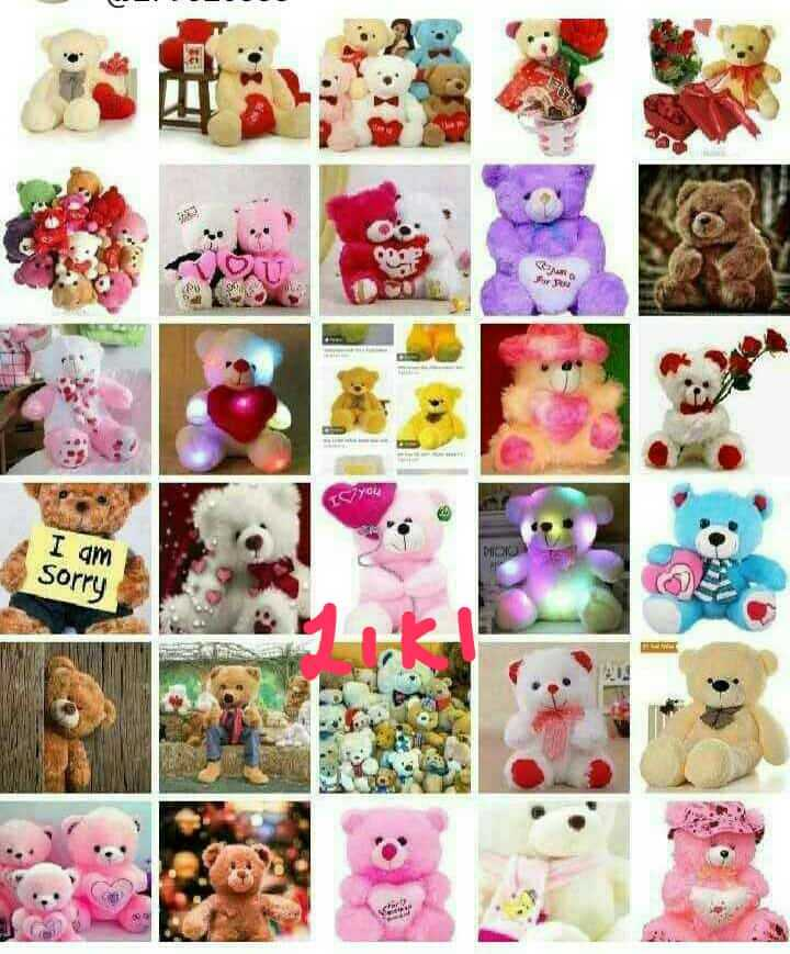 lovely teddy.... - IMO you DOO I am Sorry - ShareChat