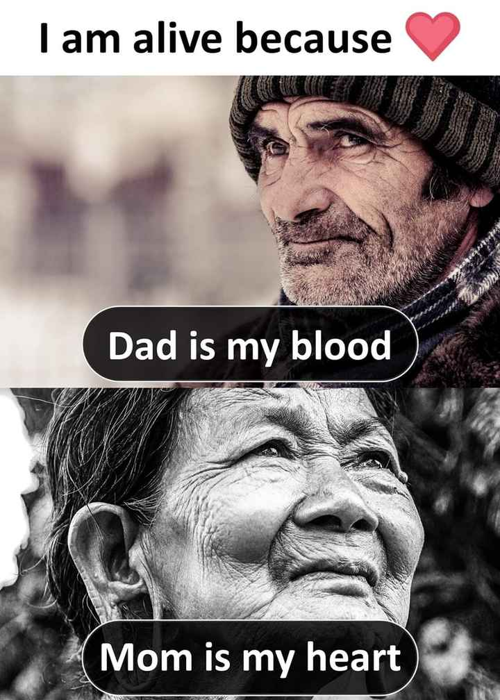 mom & dad - Tam alive because Dad is my blood Mom is my heart CVR - ShareChat