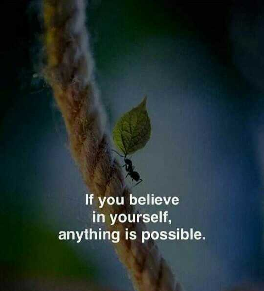 💪 motivation - If you believe in yourself , anything is possible . - ShareChat