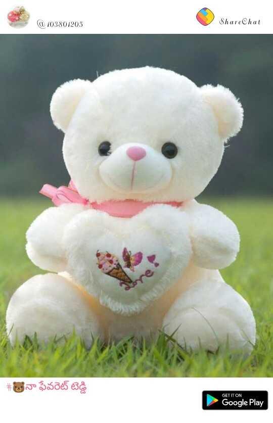 my favourite teddy bear - 103801205 ShareChat # నా ఫేవరెట్ టెడ్డి GET IT ON Google Play - ShareChat