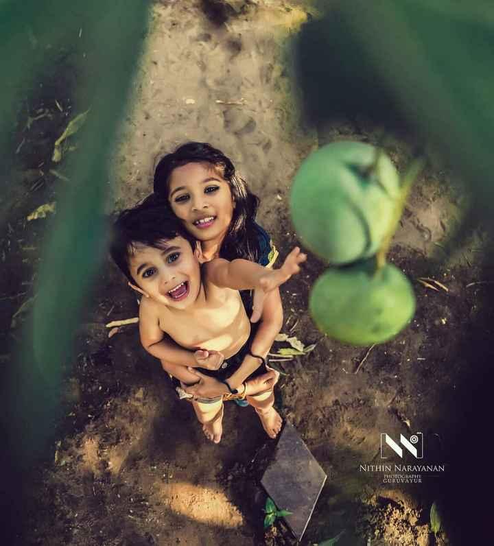 photography - NITHIN NARAYANAN PHOTOGRAPHY GURUVAYUR - ShareChat