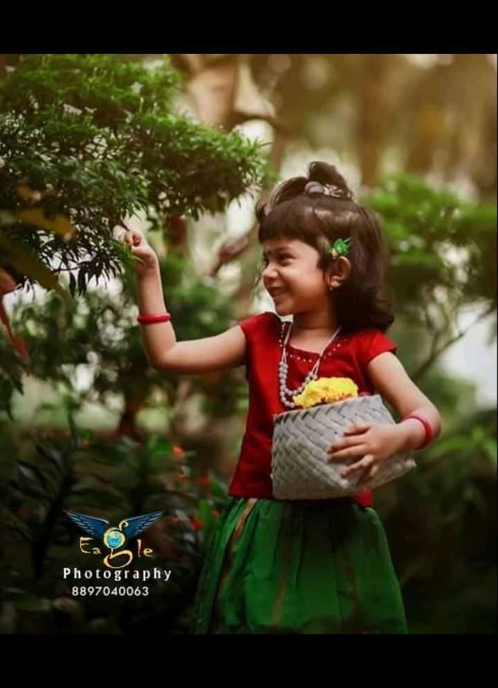 photography - le Photography 8897040063 - ShareChat