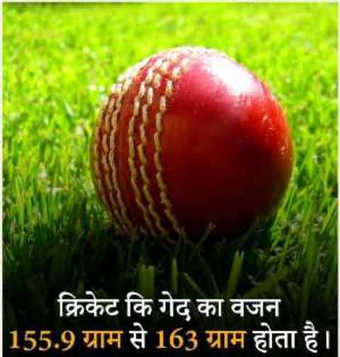 rochak thatya - क्रिकेट कि गेद का वजन 155 . 9 ग्राम से 163 ग्राम होता है । - ShareChat