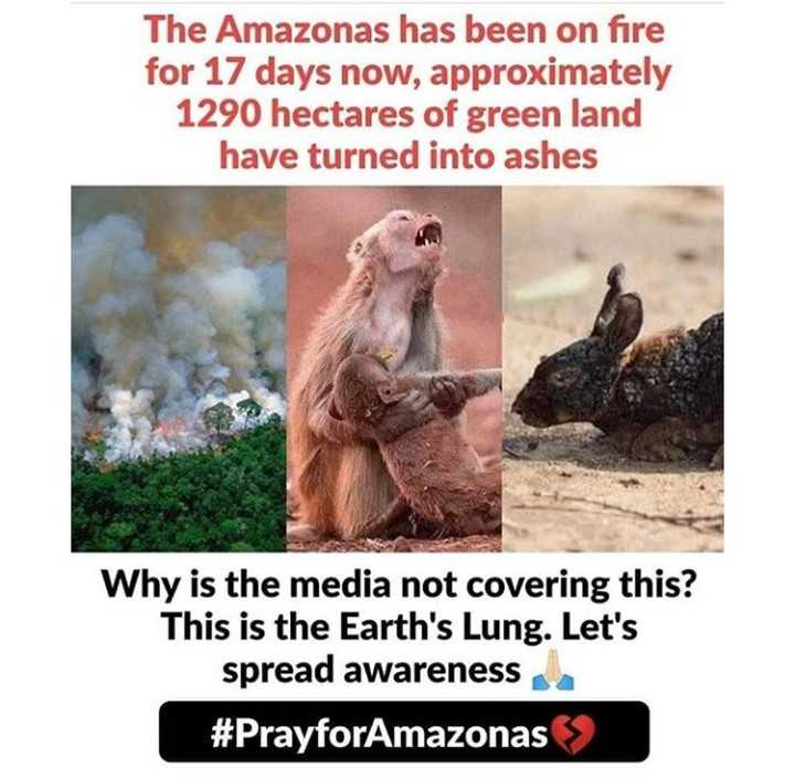 save 💧 - The Amazonas has been on fire for 17 days now , approximately 1290 hectares of green have turned into ashes Why is the media not covering this ? This is the Earth ' s Lung . Let ' s spread awareness # PrayforAmazonas - ShareChat