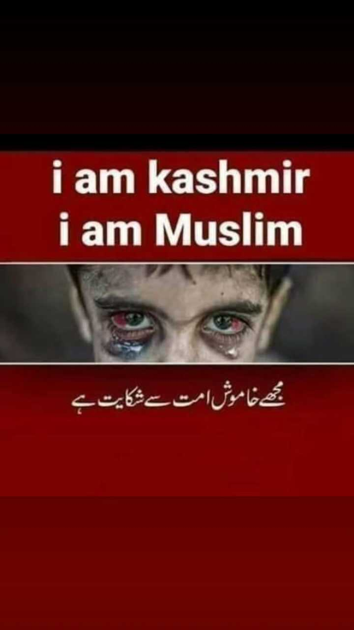 #save kashmir - i am kashmir i am Muslim مجھے خاموش امت سے شکایت ہے - ShareChat