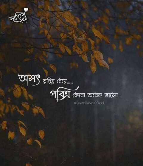 shuvo dupur - | স্মৃতির অসৎ তৃপ্তির চেয়ে . . . বেদনা অনেক ভালাে ! Smeitir Dahan Official - ShareChat