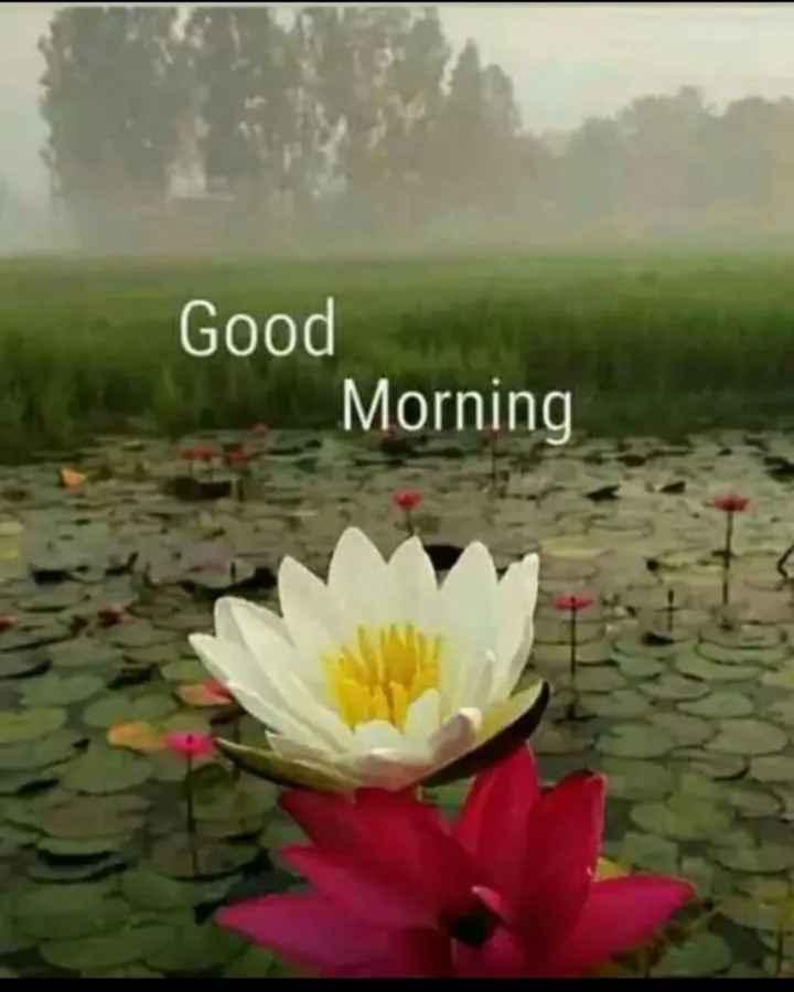 tarak - Good Morning - ShareChat