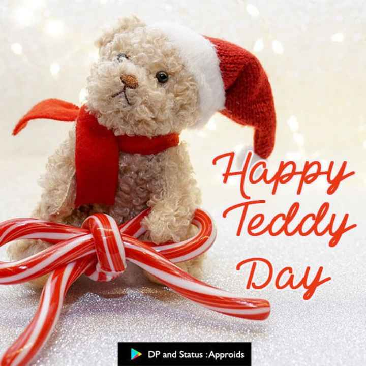 teddy - Happy Teddy Day DP and Status : Approids - ShareChat