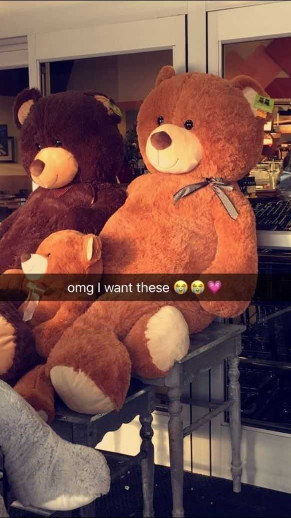 teddy bear 😙😙😙 - omg I want these - ShareChat