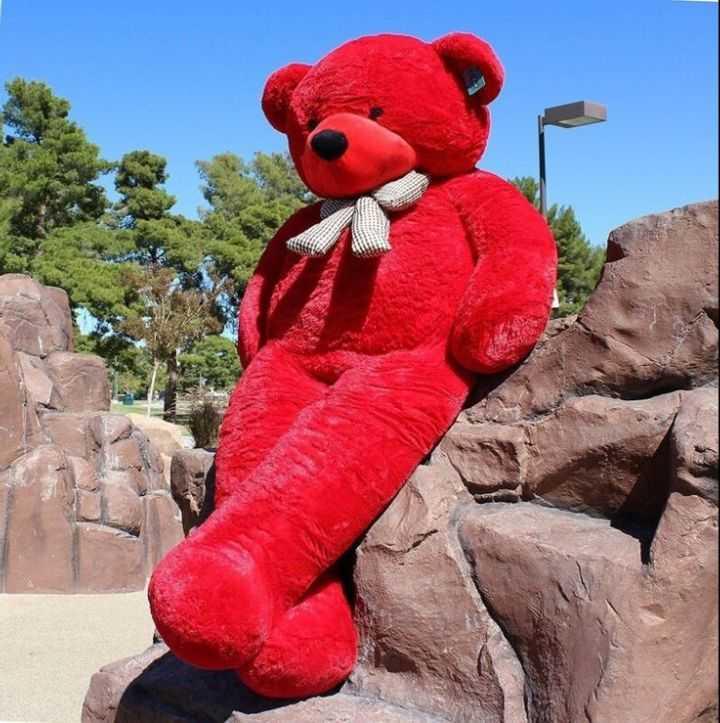 teddy bear 😙😙😙 - ShareChat