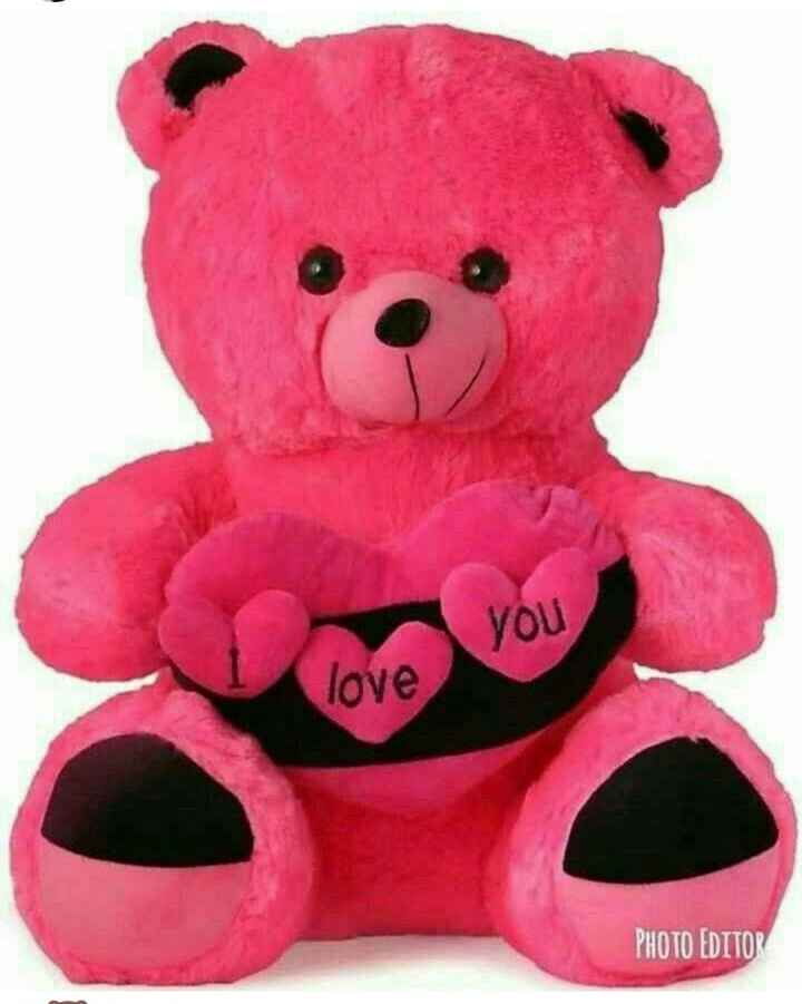 teddy love - ShareChat