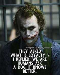true! - Instagram @ why so serious THEY ASKED WHAT IS LOYALTY ? I REPLIED , WE ARE HUMANS ASK A DOG IT KNOWS BETTER - ShareChat